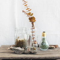 A Decor Setup Inspired By The Woods - Free People Blog