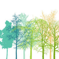 The Trees - 8 x 10, inspirational perfect day poster, print, sale - buy 2 get 3, forest, nature