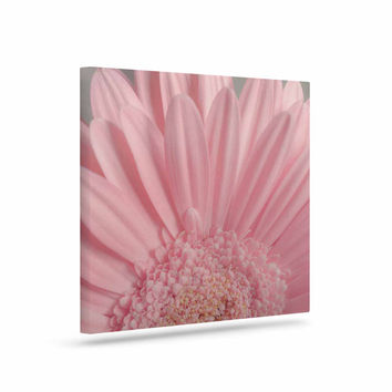 "Suzanne Harford ""Summer Daisy"" Floral Canvas Art"