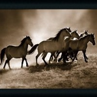 Wild Horses by Lisa Dearing Sepia Wildlife 23x19 Framed Art Print Picture Wall Decor