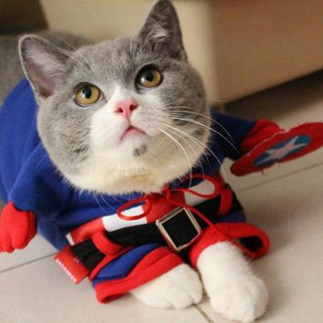 Marvel's The Avengers! Pet Winter Warm Jacket,Cat Cosplay Costume,Cat Modeling Clothe,Captain America -- Normal Edition