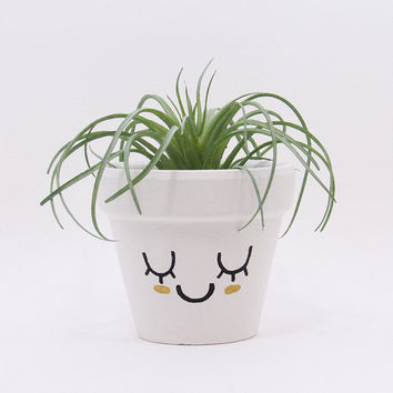 Terracotta Pot, Succulent Planter, Cute Face Planter, Plant Pot, Flower Pot, Air Plant Holder, Indoor Planter, Succulent Pot, Gold