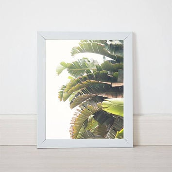 Jungle Travel Tropical Rainforest jungle palm tree print Instant Download Photography summer beach island Wall Art