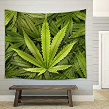 Amazon.com: weed decor