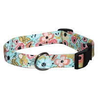Elmo's Closet Hello, Springtime Dog Collar