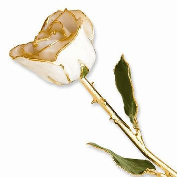 Lacquer Dipped Gold Trim White Satin Rose