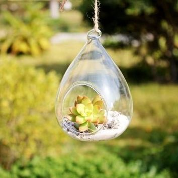Round Terrarium Cute Glass Pots Air Plant Flower Pot 12*9 cm Vases Hanging Wedding Decoration Blow Pots Round Terrarium