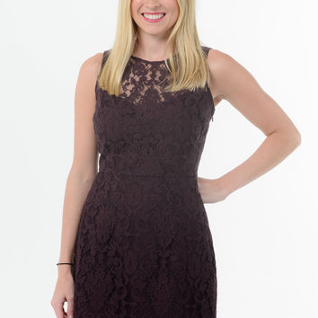 BB Dakota Lace Dress - Blackberry