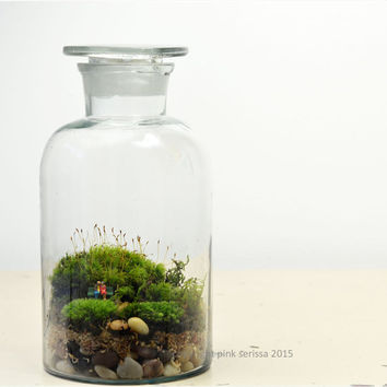 Moss Terrarium// Pharmacy Jar// Woodland Lovers 3// DIY Kit// Valentines Day // Anniversary // Wedding // Green Gift
