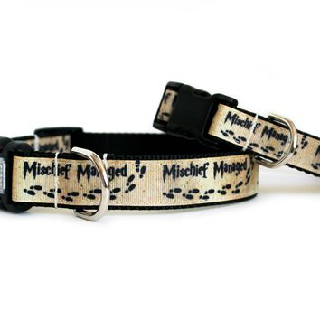 Mischief Managed Dog Collar