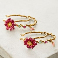 Les Nereides Climbing Floral Hoops in Gold Size: One Size Earrings