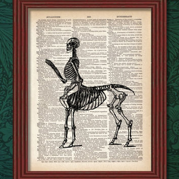 BUY 2 GET 1 FREE Centaur Skeleton Dictionary Art Print Greece Mythology Fantasy Anatomy Skull Horse Biology Beast Decor Wall Illustration