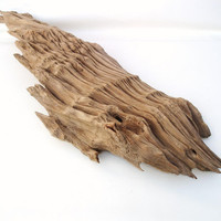 Large Cypress Driftwood Log / Reclaimed Basin Cypress Sculpture / Wood Abstract Art