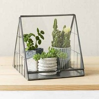 4040 Locust Beach House Terrarium- Black One