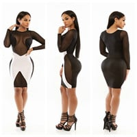 Black and White Mesh Cut-Out Long Sleeve Bodycon Dress