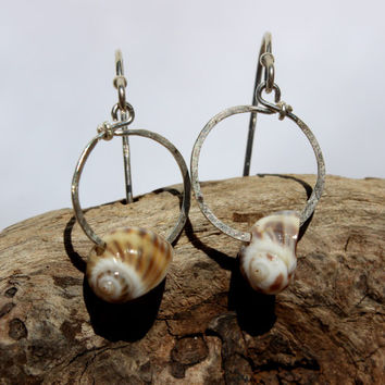 Hawaiian Small  Gorgeous Kailua Tidal Snail Shells on Hammered 925 Sterling Silver Circular Wire Small Hoop Earrings
