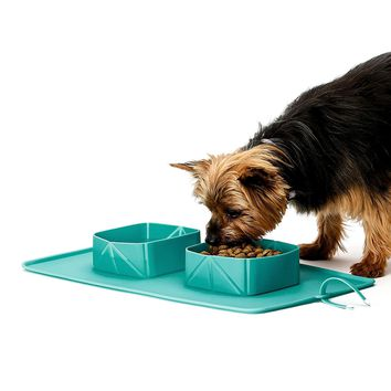 Collapsible Expandable Dog Bowl for Pet Cat Food Water Feeding
