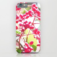Red fruit iPhone & iPod Case by Yumehana Design Fine Art Photography