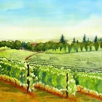 Vineyard Art Amity Oregon by WatercolorByMuren on Etsy