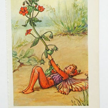Scarlet Pimpernel Fairy Picture, Red Flower Fairy, nursery art, Flower Fairies of the Spring, Cicely Mary Barker