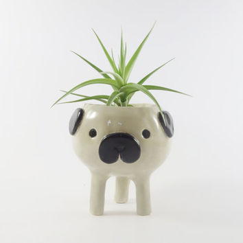 Pug Planter / Ceramic Dog Plant Pot / Succulent Pot