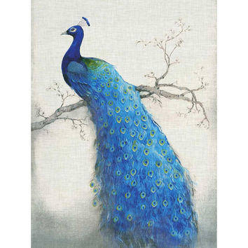 QLD-064 embroidery animals Home Decoration Needlework New round diamond painting Spirit of the blue bird peacock 60x80cm