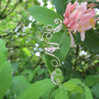Pink Beaded Silver Wire CurlyQ Ear Cuff by TheHempChick on Etsy