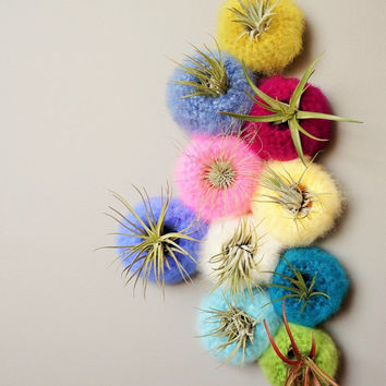 Mini Spun Sugar Air Plant Pod / Airplant Pot Tillandsia / Yarn Pod / Fluffy Yarn Bowl / Vertical Garden Basket / Felted Pod / Sea Urchin Pod
