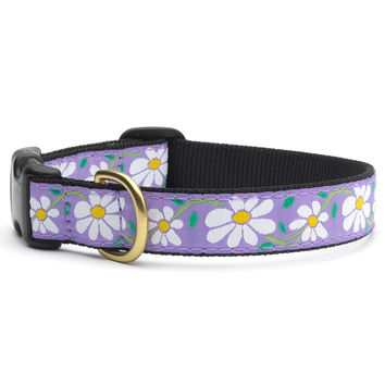 Daisies Dog Collar