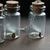 Captured Wish necklace - natural history specimen in a clear jar necklace - rustic seed pod pendant