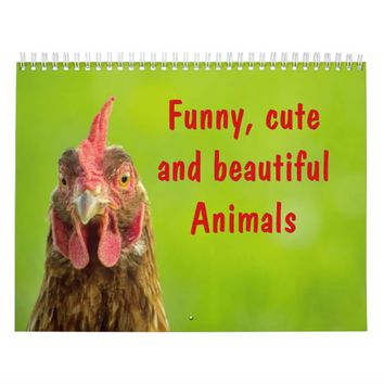 Funny, Cute and Beautiful Animals - Calendar