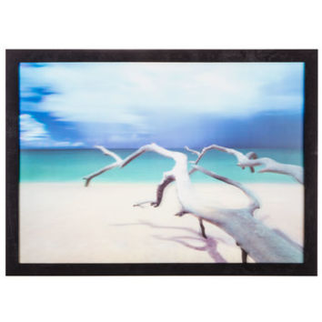 Beach Driftwood 3D Framed Wall Decor | Hobby Lobby | 1465244