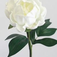 """Real Touch Peony in White - 18"""" Tall"""