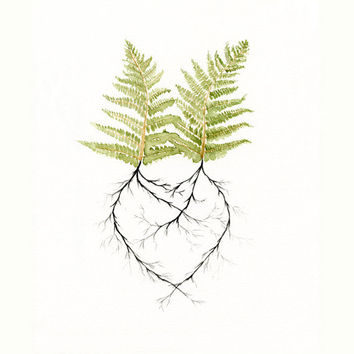 Watercolor Painting Print -  Two Ferns in Love  - Couple Heart - Engagement - Nature Romantic - Woodland Forest Roots -  Newlywed Gift Idea