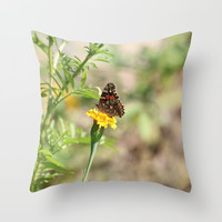 Red Admiral Butterfly Throw Pillow by Theresa Campbell D'August Art
