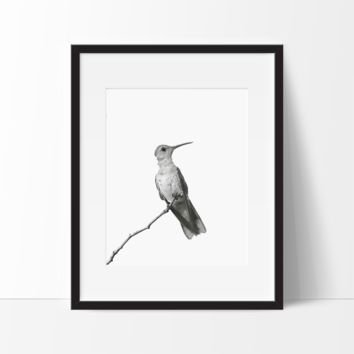Nature Art, Black and White Bird #2 Print, Unframed