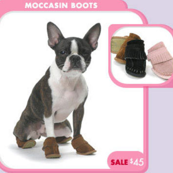 Moccasin Boots dog Accessories + Jewelry - Fancy Footwear - Pet Apparel - Hats + Boots - Summer Sale + Specials - trixie + peanut