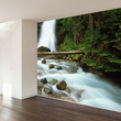 Paul Moore's Waterfall In Glacier National Park Mural wall decal
