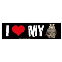 I love my Cat (Bumper Sticker)