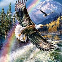 Whitewater Eagle 500pc Jigsaw Puzzle