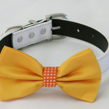 Yellow orange Dog Bow tie, Pet wedding accessory, Yellow bow tie, Bow attached to dog collar,Summer wedding accessory, Yellow orange wedding