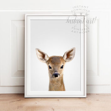 Baby animal print PRINTABLE art,baby deer print,nursery decor,animal art,baby animals,nursery wall art,fawn print,kids art,baby animal