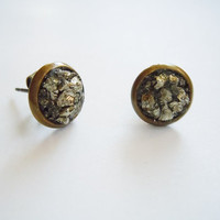 Shimmering Raw Pyrite Stud Earrings - Natural Glam - Boho Chic - Fashion Accessories