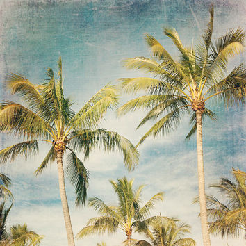 Boho Island - Photographic print - Palm Trees, Australia, blue, boho, bohemian, Wall, Art, Dreamy, Decor, palms, tropical, beachy