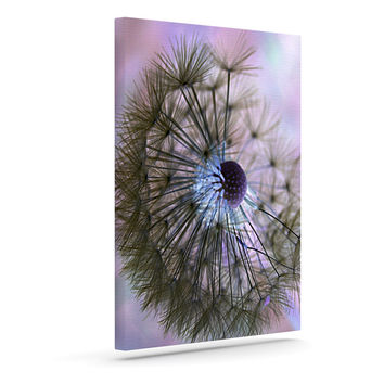 "Alison Coxon ""Dandelion Clock"" Outdoor Canvas Wall Art"