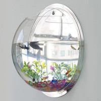 Creative Acrylic Hanging Wall Mount Fish Tank Bowl Vase Aquarium Plant Pot Bowl Bubble Aquarium Decor