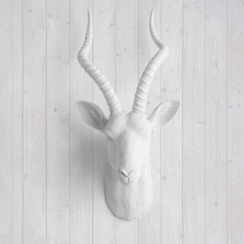 The Maasai White Faux Antelope / Gazelle Head