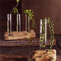 Roost Driftwood Vases at Velocity Art And Design