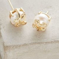 Smallwood Posts by Anthropologie in Ivory Size: One Size Earrings
