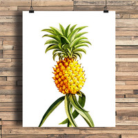 Pineapple Illustration, Tropical Fruit, Home, Kitchen, Bathroom, Nursery, Chic, Bedroom, College Dorm Room Decor, Poster, Giclee Art Print